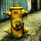 Hydrant by MattD