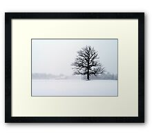 Blizzard Tree Framed Print
