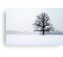 Blizzard Tree Canvas Print