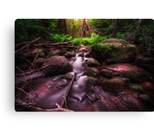 Jungle fever Canvas Print