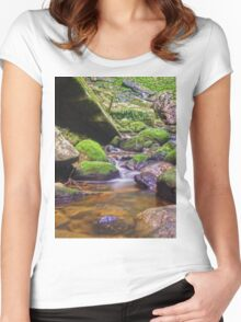 Relaxing long exposure Women's Fitted Scoop T-Shirt