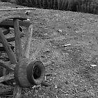 Wheel by Neil Baffert