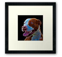 Pit Bull Pop Art - 7773  Framed Print
