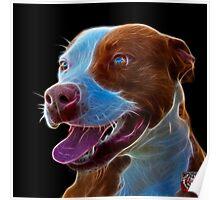 Pit Bull Pop Art - 7773  Poster