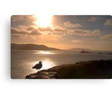 Dingle Peninsula, Co.Kerry, Ireland Canvas Print