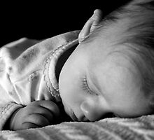 The life of a baby. by aisamarie