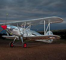 1931 Hawker Fury Bi Plane 1 by David  Hibberd