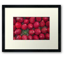 Gourmand strawberries Framed Print