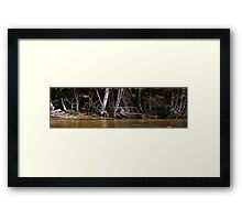 0466 - HDR Panorama - Shore and Dead Trees Framed Print