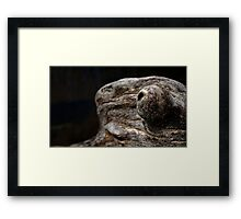 0468 - HDR Panorama - Driftwood Framed Print