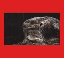 0468 - HDR Panorama - Driftwood Baby Tee