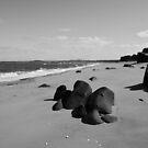 The Beach by Doug Cook