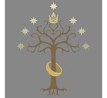 Lord of the Rings Inspired Tree Photographic Print