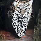 A Snow Leopard Stalking by Alexart