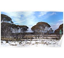 Cooma 100 - Snowy Mountains National Park,NSW Australia Poster