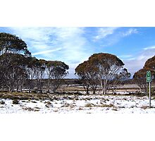 Cooma 100 - Snowy Mountains National Park,NSW Australia Photographic Print