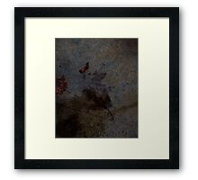 0544 - HDR Panorama - Leaf Rain Shadow Framed Print