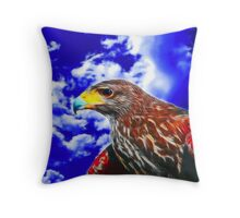 Eyes of a Hawk 2 Throw Pillow
