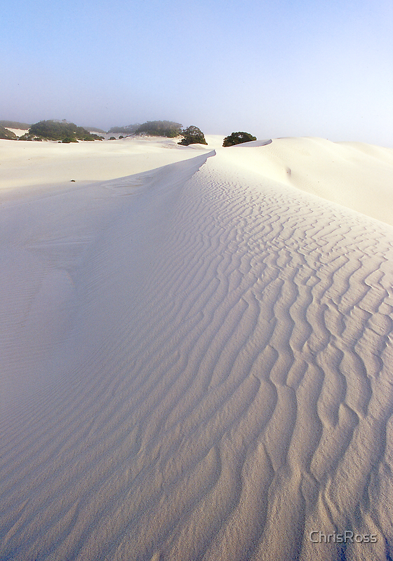 Dunes at Eyre Telegraph Station by ChrisRoss