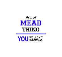 It's a MEAD thing, you wouldn't understand !! by thenamer