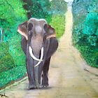 Elipant Sri Lanka by nilantha77