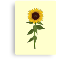 Sunflower Canvas Print