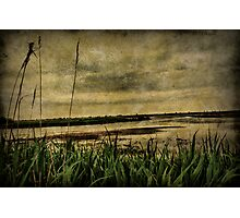 Down at the lake Photographic Print
