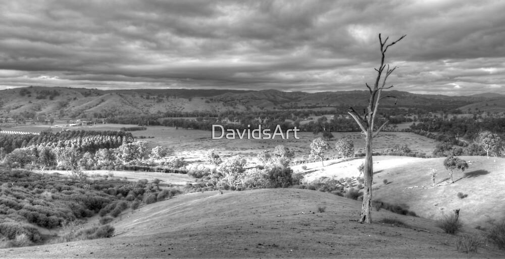 0561 Still got the view by DavidsArt