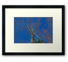 It won't stop moving....... Framed Print