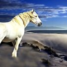 White Dream by Gene Praag