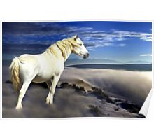 White Dream Poster