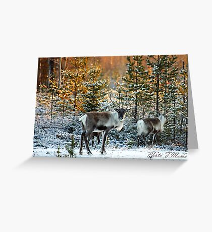 rencontre Greeting Card