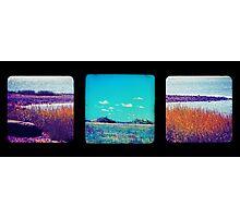 Hog Island Triptych Photographic Print