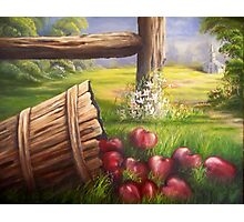 Forgotten Apples Photographic Print