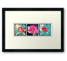 Roses are Red? Framed Print