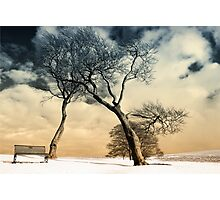 Winter Warriors Photographic Print