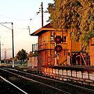 """""""North Geelong A"""" by Phil Thomson IPA"""