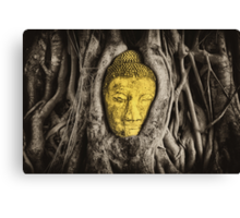 Buddha in Roots Canvas Print