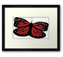 Colored butterfy Framed Print