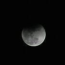 Lunar Eclipse by Debbie Sickler