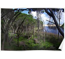 Bournda National Park, New South Wales Poster