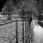 a dark cold footpath in nottingham by rustycb