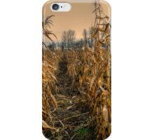 It's a Long Winter iPhone Case/Skin