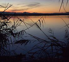 Sunset over Lake Albufera, Valencia, Spain by eeek