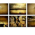 Gold by Tony Lomas