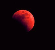 Eclipse  by Vonnie Murfin