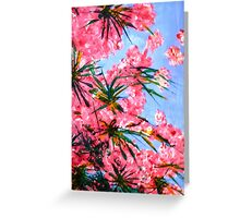 Oleander 2 Greeting Card