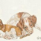 Brittany Spaniel Puppies by BarbBarcikKeith