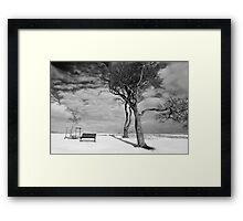 Winter Warriors 2 Framed Print