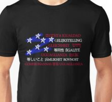 Equality in America Unisex T-Shirt